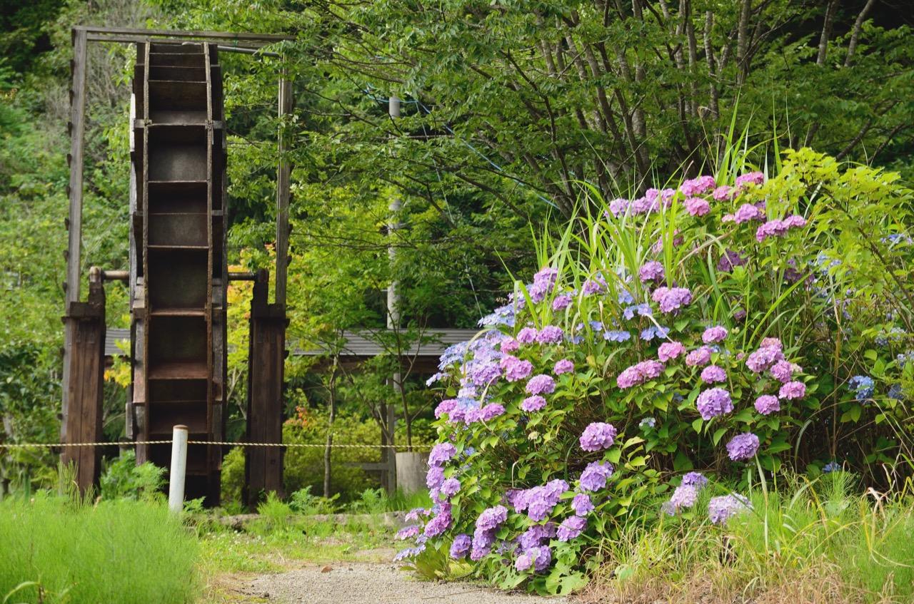 大滝山温泉 神の湯|秋田観光 自然 散策