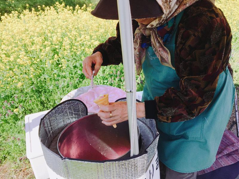 秋田名物ババヘラアイスを数年ぶりに食べてみた