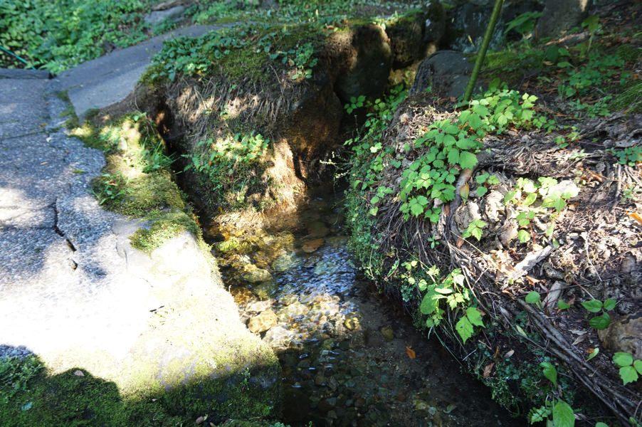 サイダー片手に散歩したい!美郷町六郷湧水群 ニテコ清水&湧子ちゃんで仁手古サイダー