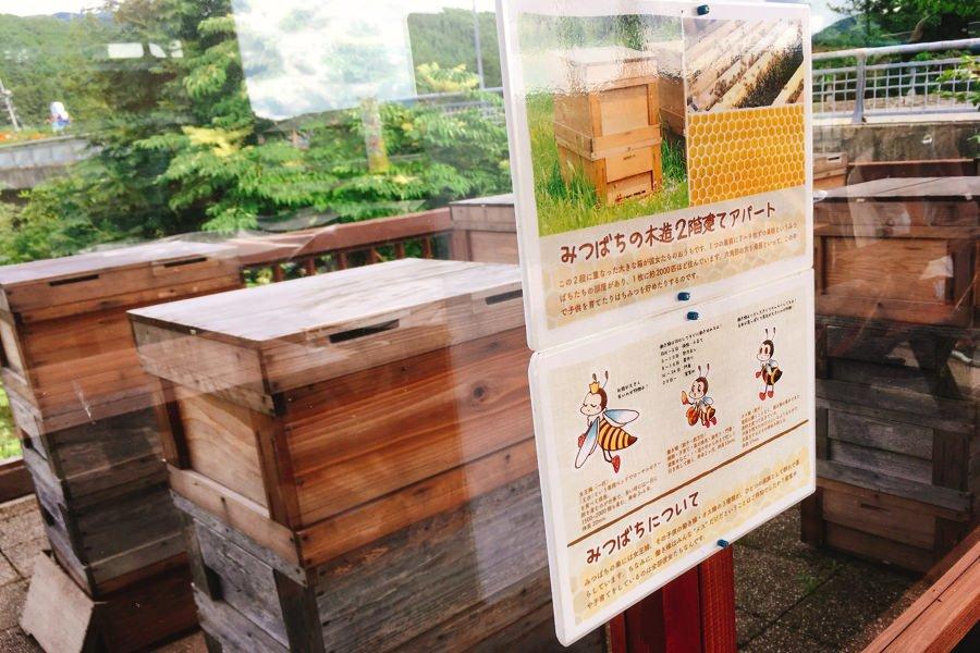 田沢湖 山のはちみつ屋さん お菓子工房のスイーツいろいろ食べてみた